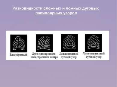 Разновидности сложных и ложных дуговых папиллярных узоров