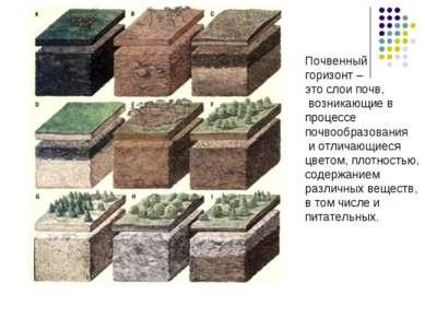 Почвенный горизонт – это слои почв, возникающие в процессе почвообразования и...