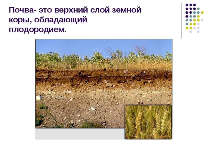 Почва- это верхний слой земной коры, обладающий плодородием.