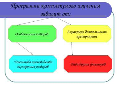 Программа комплексного изучения зависит от: Особенности товаров Масштаба прои...
