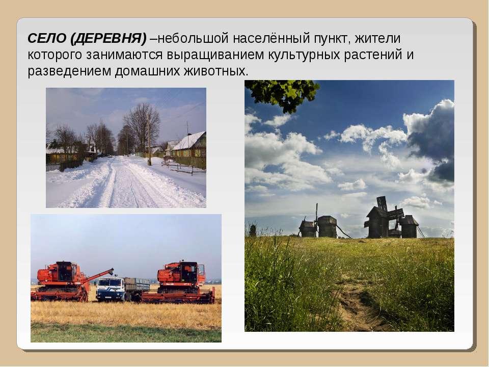 СЕЛО (ДЕРЕВНЯ) –небольшой населённый пункт, жители которого занимаются выращи...