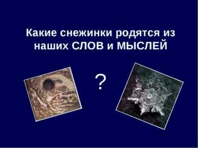 Какие снежинки родятся из наших СЛОВ и МЫСЛЕЙ ?