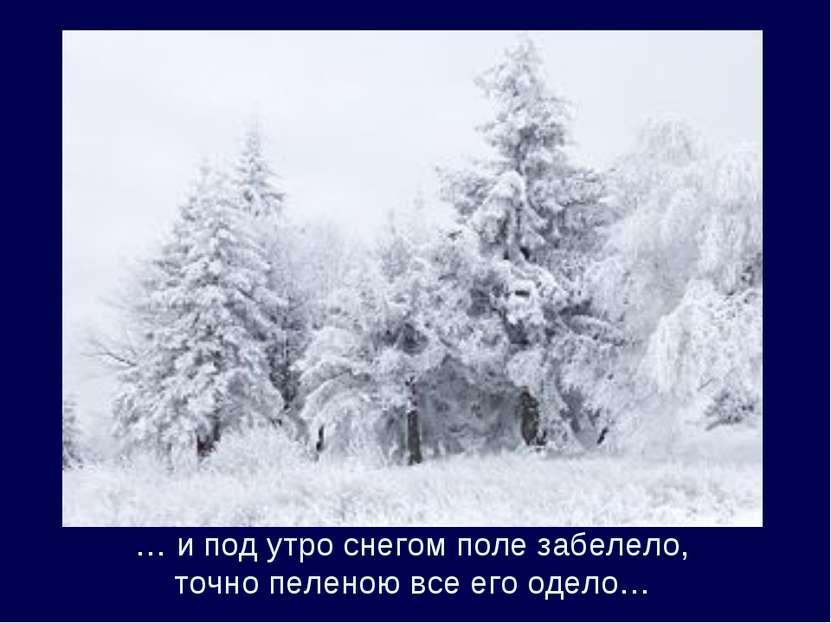 … и под утро снегом поле забелело, точно пеленою все его одело…