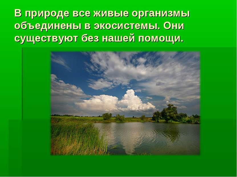 В природе все живые организмы объединены в экосистемы. Они существуют без наш...