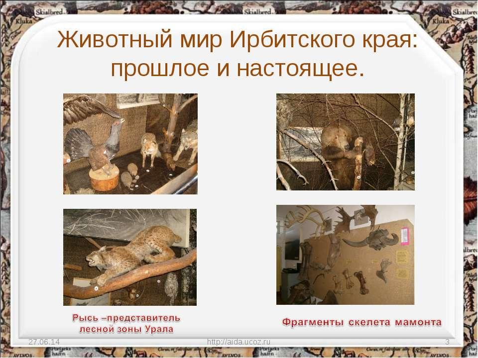 Животный мир Ирбитского края: прошлое и настоящее. * http://aida.ucoz.ru * ht...