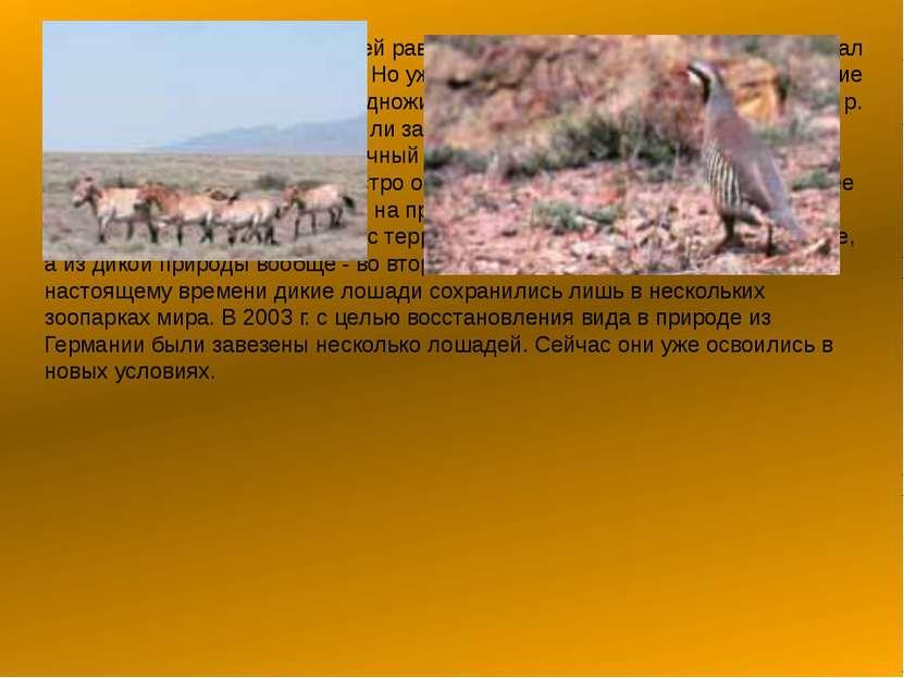 В начале прошлого века на всей равнинной территории Казахстана от р. Урал до ...