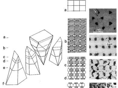 3-D организация пласта с гистионом состава АВС2