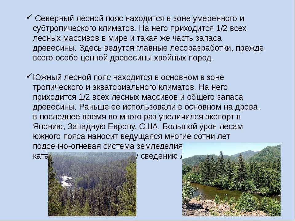 Северный лесной пояс находится в зоне умеренного и субтропического климатов. ...