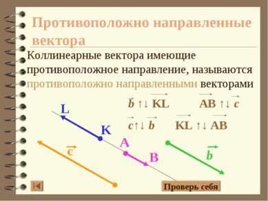 Противоположно направленные вектора Коллинеарные вектора имеющие противополож...