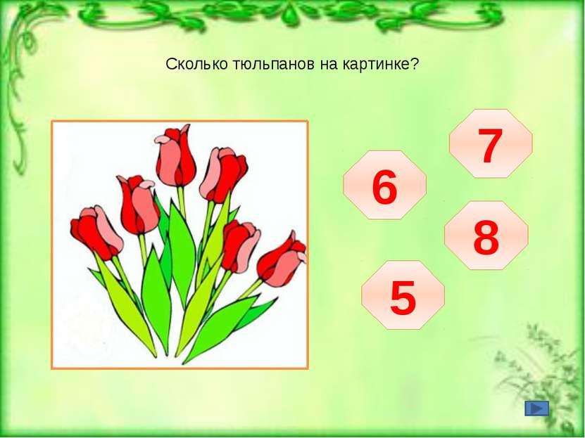 Сколько тюльпанов на картинке?