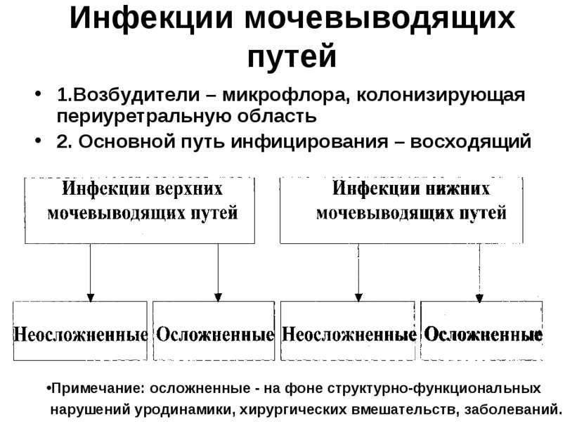 rezhushaya-bol-posle-mocheispuskaniya-u-zhenshin