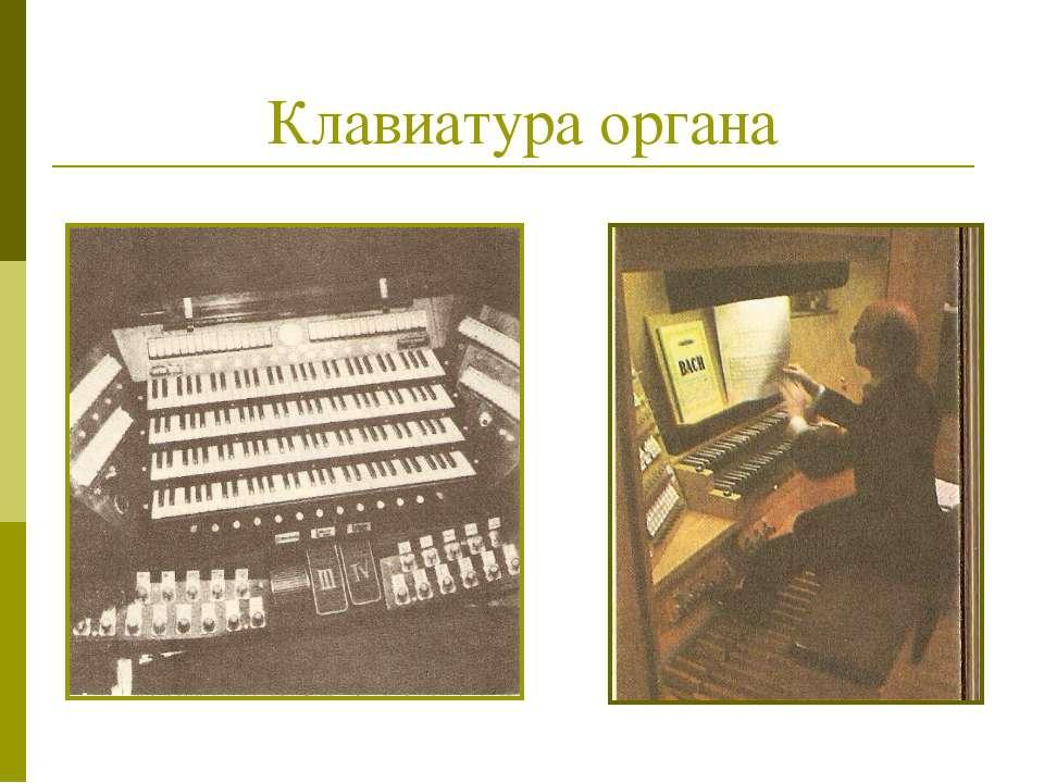 Клавиатура органа