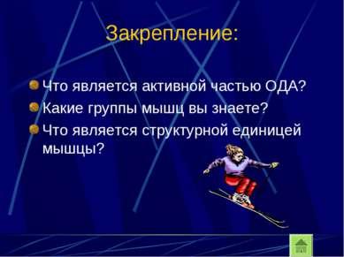 Закрепление: Что является активной частью ОДА? Какие группы мышц вы знаете? Ч...