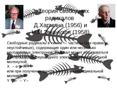 3. Теория свободных радикалов Д.Хармана (1956) и Н.М.Эмануэля (1958) Свободны...