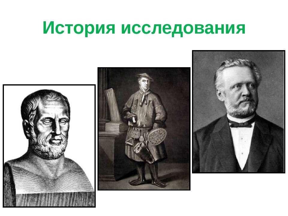 История исследования