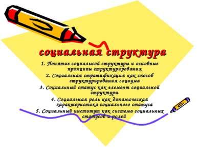 социальная структура 1. Понятие социальной структуры и основные принципы стру...