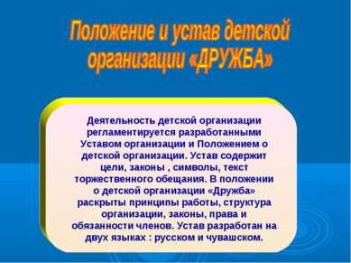 Деятельность детской организации регламентируется разработанными Уставом орга...