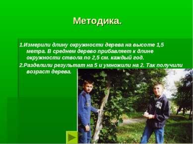 Методика. 1.Измерили длину окружности дерева на высоте 1,5 метра. В среднем д...