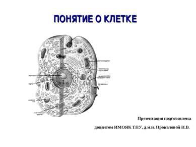 ПОНЯТИЕ О КЛЕТКЕ Презентация подготовлена доцентом ИМОЯК ТПУ, д.м.н. Провалов...