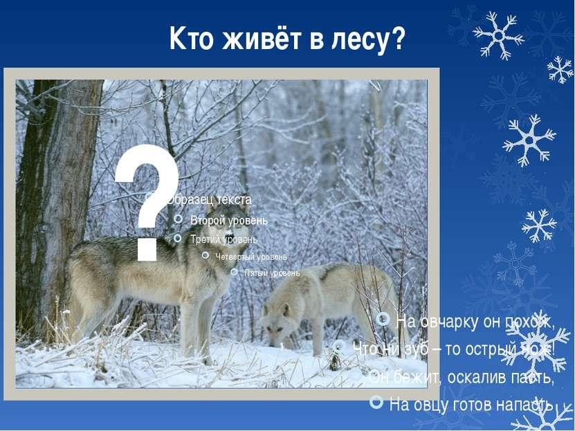 Кто живёт в лесу? На овчарку он похож, Что ни зуб – то острый нож! Он бежит, ...