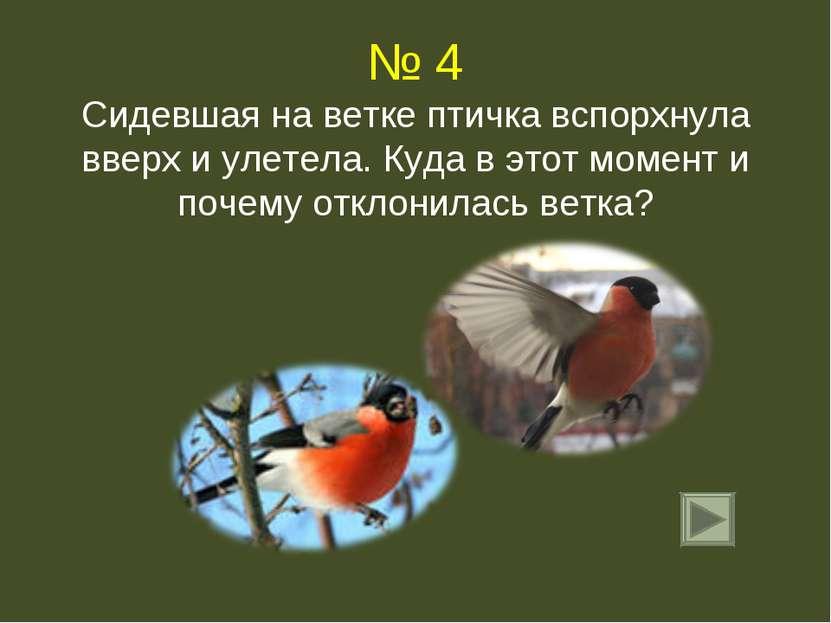 № 4 Сидевшая на ветке птичка вспорхнула вверх и улетела. Куда в этот момент и...
