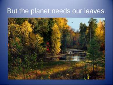 But the planet needs our leaves.