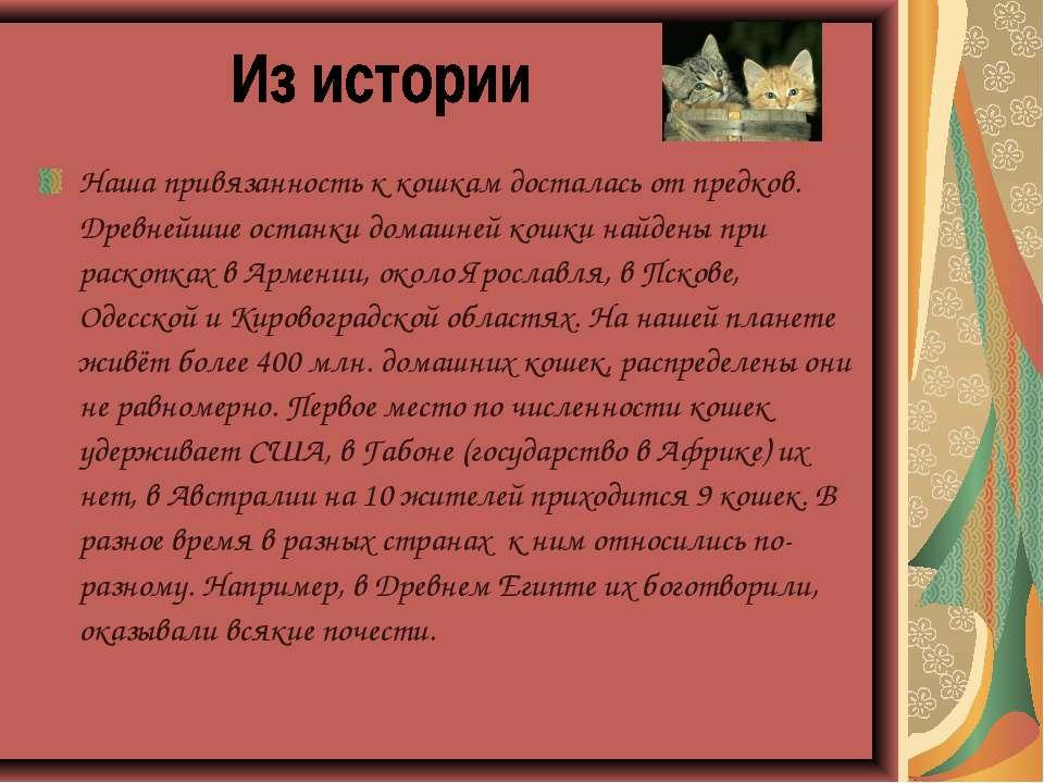 Наша привязанность к кошкам досталась от предков. Древнейшие останки домашней...