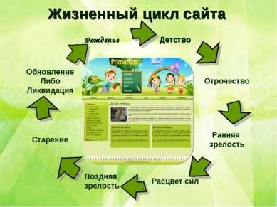 Жизненный цикл сайта