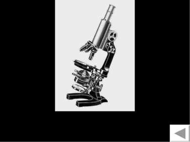 Микроскоп 11
