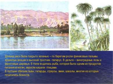 Долина реки была покрыта зеленью – по берегам росли финиковые пальмы, душисты...
