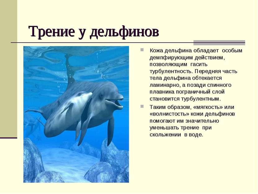 Трение у дельфинов Кожа дельфина обладает особым демпфирующим действием, позв...