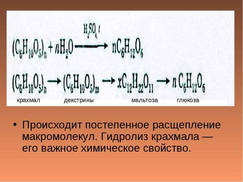 Происходит постепенное расщепление макромолекул. Гидролиз крахмала — его важн...