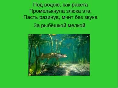 Под водою, как ракета Промелькнула злюка эта. Пасть разинув, мчит без звука З...