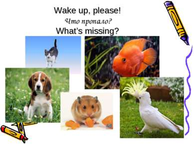 Wake up, please! Что пропало? What's missing?