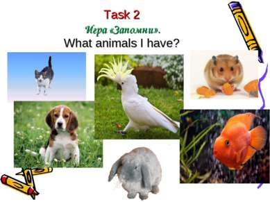 Task 2 Игра «Запомни». What animals I have?