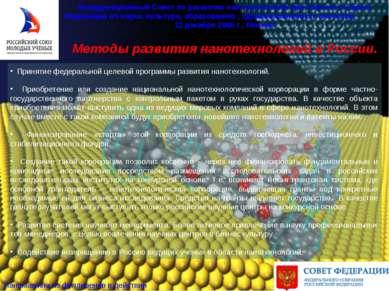 Методы развития нанотехнологий в России. Координационный Совет по развитию на...