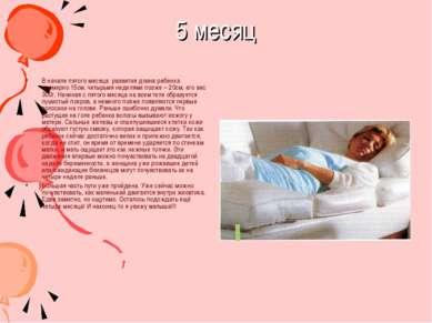 5 месяц В начале пятого месяца развития длина ребенка примерно 15см, четырьмя...
