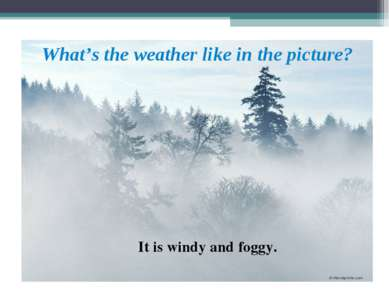 What's the weather like in the picture? It is windy and foggy.