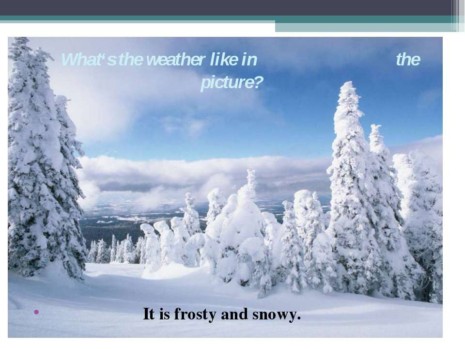 What's the weather like in the picture? It is frosty and snowy.