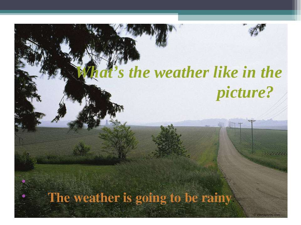 What's the weather like in the picture? The weather is going to be rainy.