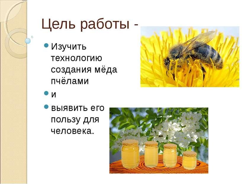 Цель работы - Изучить технологию создания мёда пчёлами и выявить его пользу д...