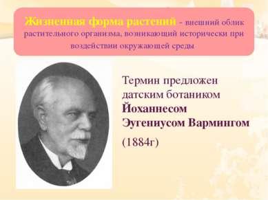 Термин предложен датским ботаником Йоханнесом Эугениусом Вармингом (1884г) Жи...