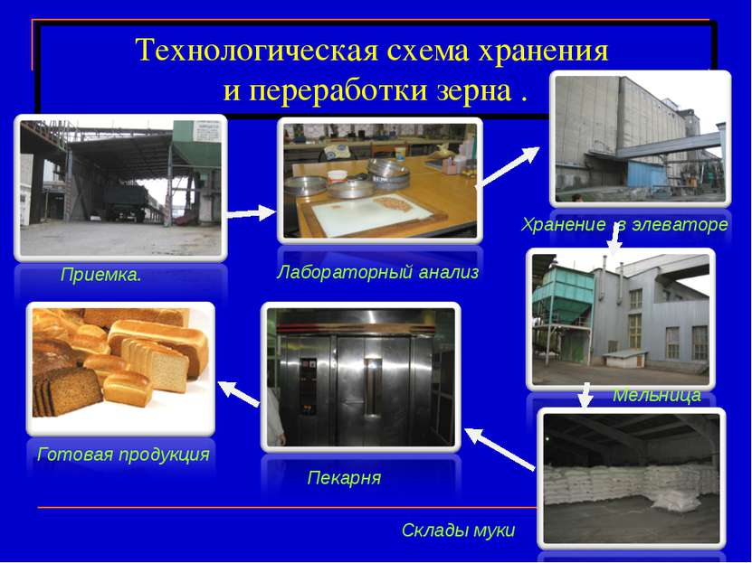 Технологическая схема хранения и переработки зерна . Приемка. Хранение в элев...