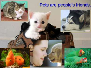 Pets are people's friends.