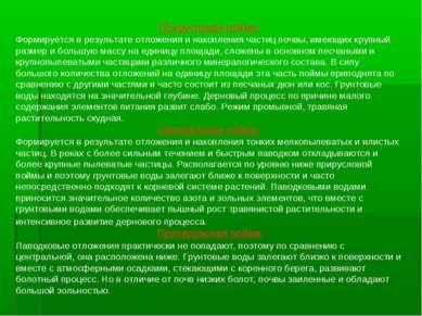 Прирусловая пойма: Формируется в результате отложения и накопления частиц поч...