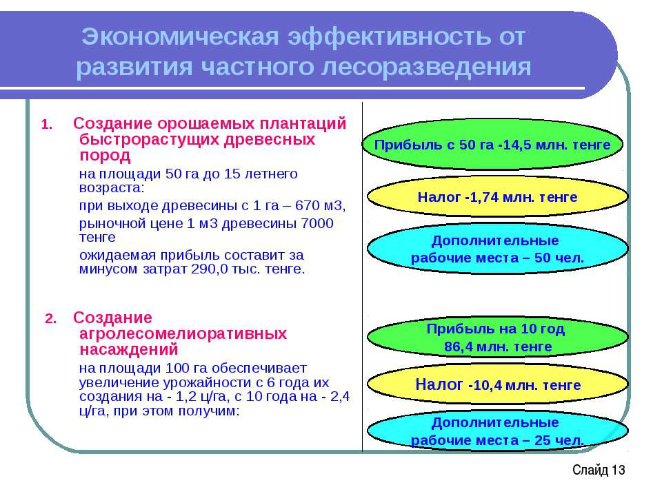 Налог -1,74 млн. тенге Прибыль с 50 га -14,5 млн. тенге Экономическая эффекти...