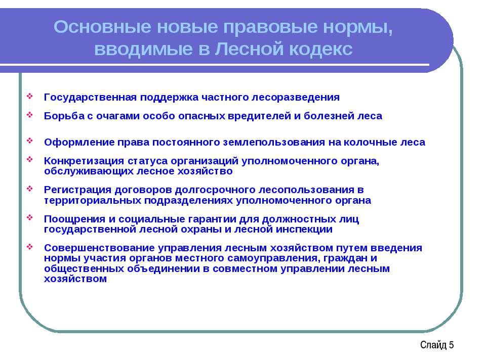 Основные новые правовые нормы, вводимые в Лесной кодекс Государственная подде...