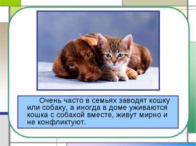 Очень часто в семьях заводят кошку или собаку, а иногда в доме уживаются кошк...