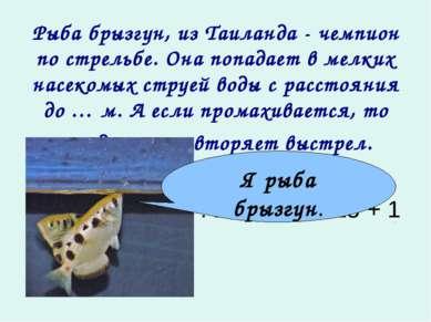 Рыба брызгун, из Таиланда - чемпион по стрельбе. Она попадает в мелких насеко...