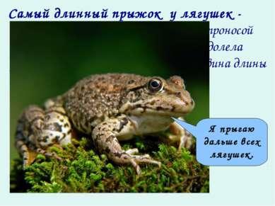 Самый длинный прыжок у лягушек - у южноафриканской остроносой лягушки. За … п...